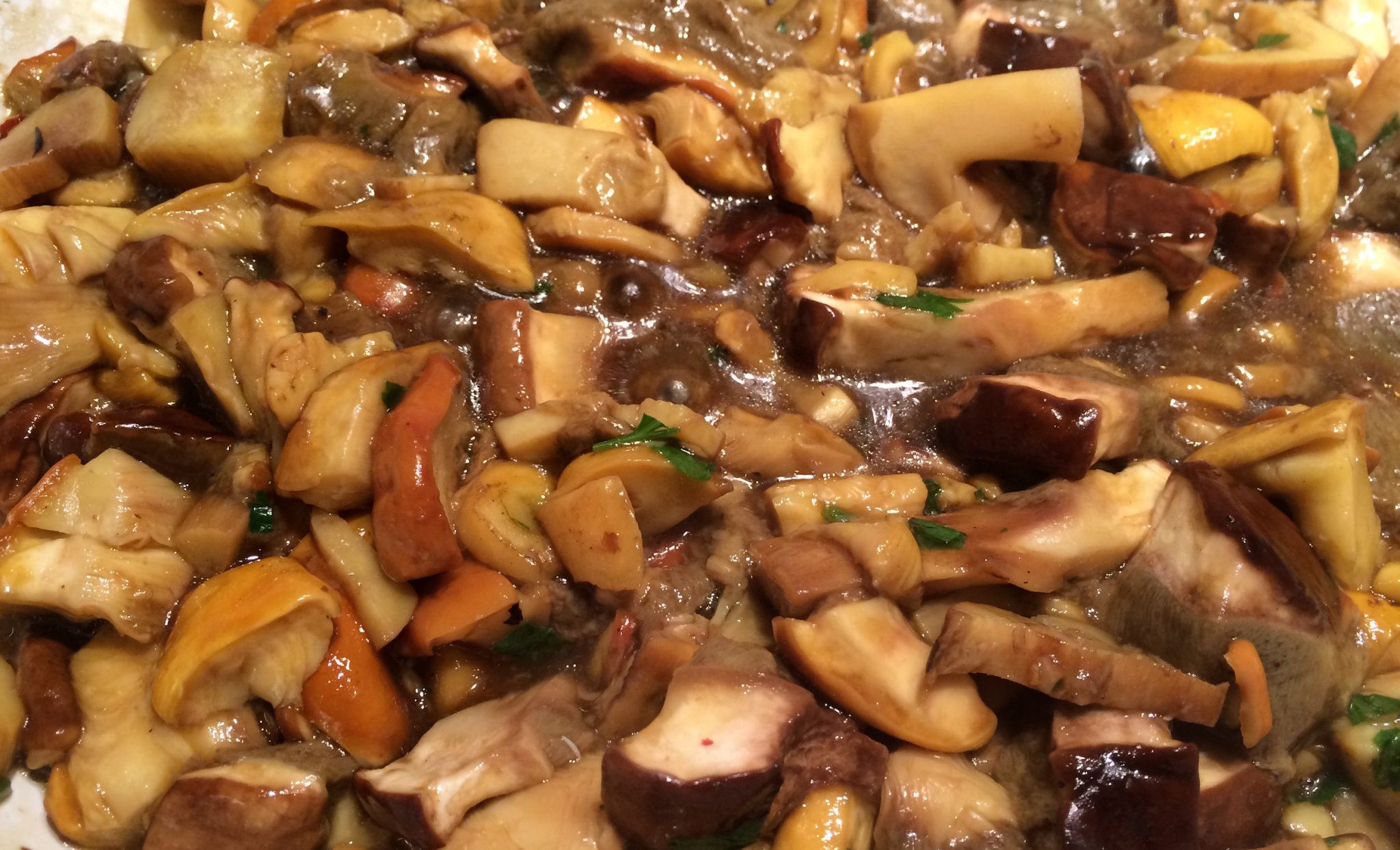Ovoli e porcini mushrooms