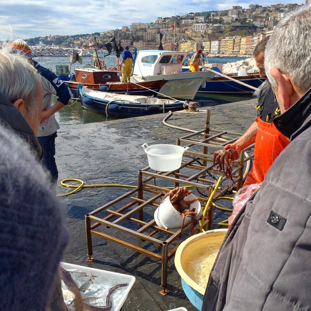 Fishermen Octopy in Napoli