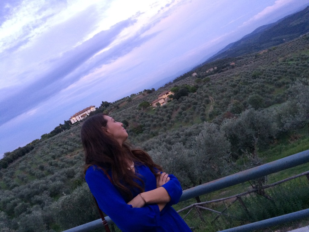 The view from la Delfina over the tuscan hills