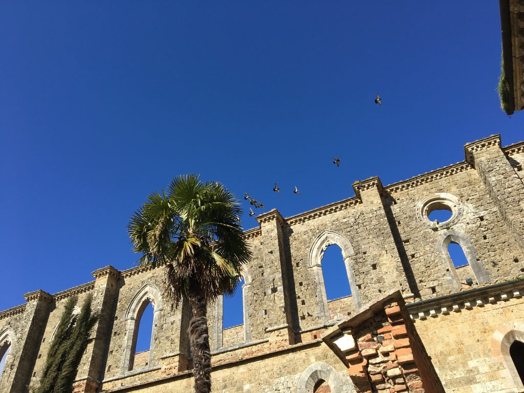 Birds fly over the mysterious Symbols in the Abbey of Saint Galgano