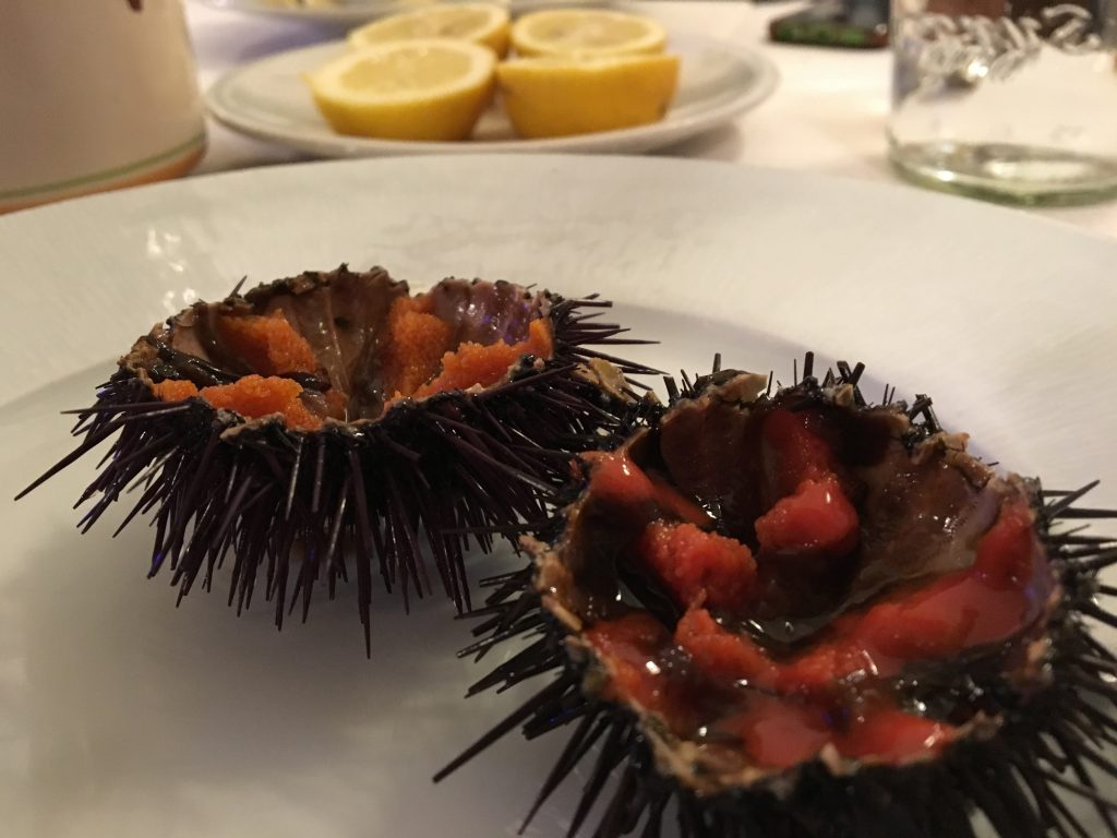 Ricci di mare or sea urchins at restaurant nino in letojanni near taormina